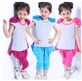Promotion! New 2014 Summer Girl Clothing Set Kids Girl Fashion Casual Short-sleeve Beautiful Shoudlers Flowers Twinset Set