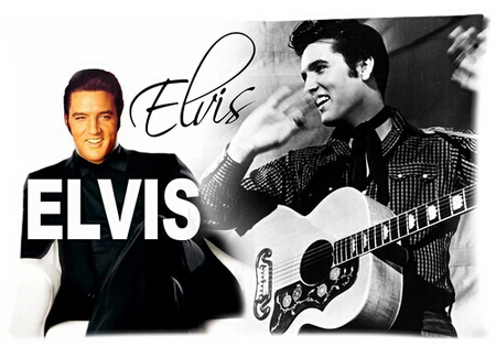 Kostenloser Versand Bettwäsche Set Mode Elvis Presley Kissenbezug