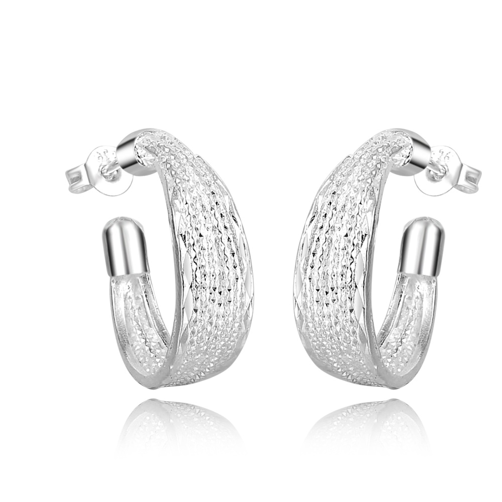 Fashion Lady Jewerly 925 Silver Earrings Friendship Girls Gift Wholesale Women Earring EH000256