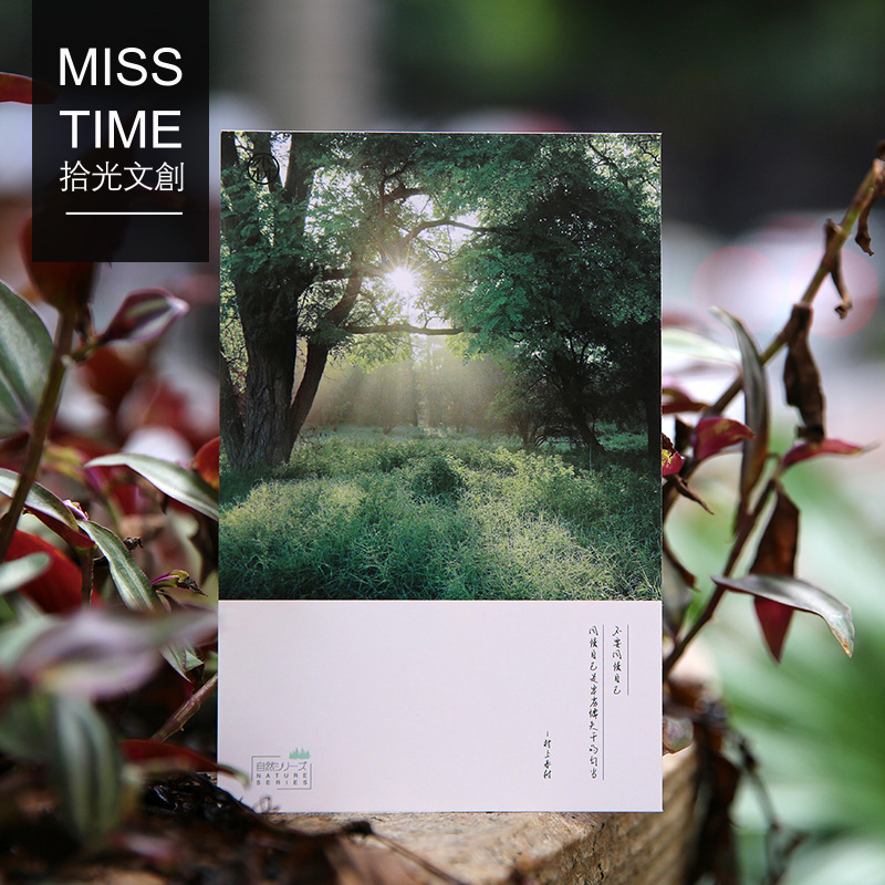 30 Pcs/lot MISS TIME Sky Series Forest Tree  Gift Cute Stationery  Postcard  Birthday Gift Card  For Message
