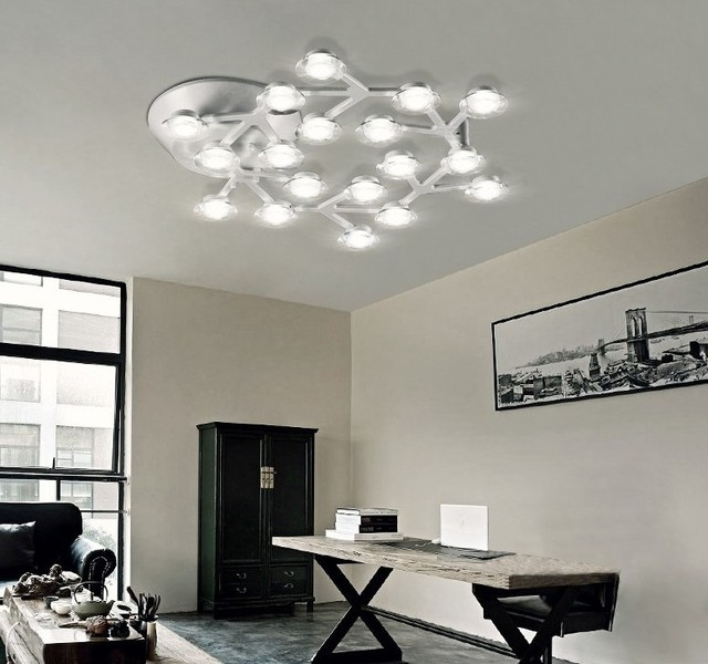 Plum Blossom Lampy Led Lampy Sufitowe światło Kopuły Metalu Akrylowa