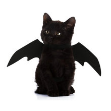Pet Dog Cat Bat Asa Cosplay Prop Asas de Morcego Halloween Fancy Dress Costume Outfit 88 Para Navio Da Gota(China)