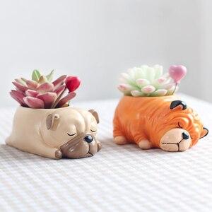 Image 4 - Roogo 8 kreatywny psy w stylu kreskówki wazon na kwiaty soczysty żywiczny śliczne ze śpiącym zwierzęciem do tyłu uczniowie doniczka prezent