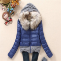 2016 Women Winter Coat Cotton Padded Jacket Short Knitted  Fur Collar Womens Winter Jackets and Coats A022