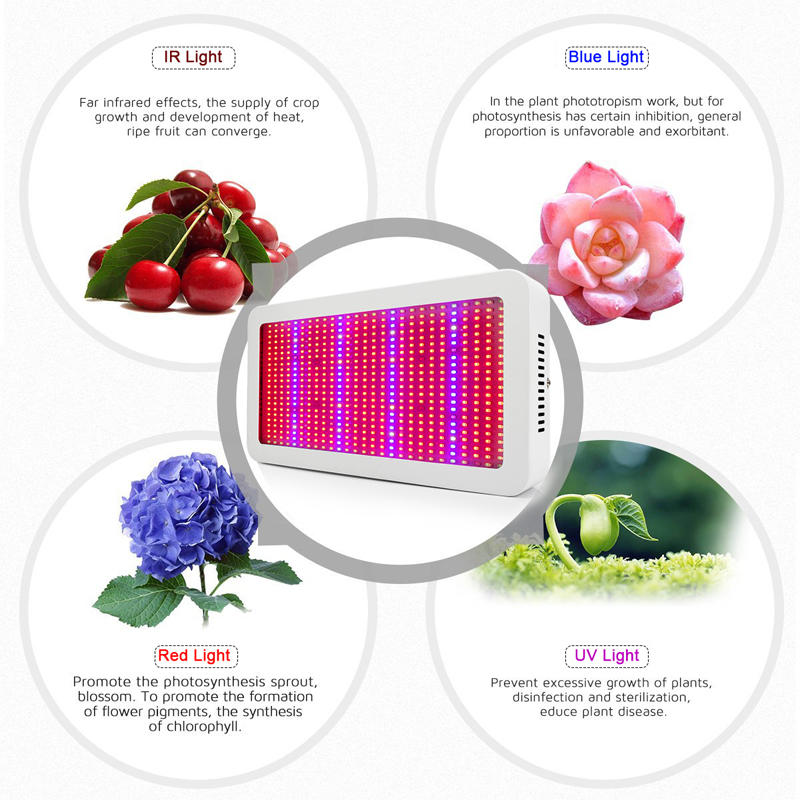 Image 4 - LVJING Led Grow Light 300/400/500/600/800/1000/1200/1600W Full Spectrum For Indoor Greenhouse Grow Tent Plants Grow Led Light-in Growing Lamps from Lights & Lighting