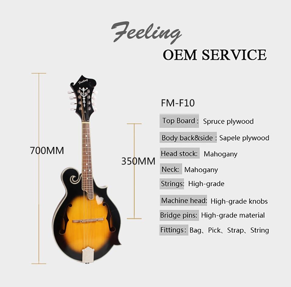 FM-F10