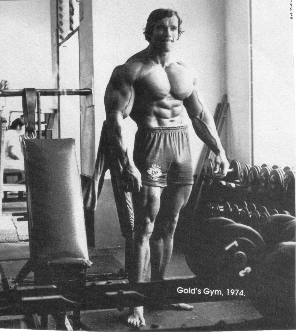 Arnold Schwarzenegger Bodybuilding gyms athletic ...