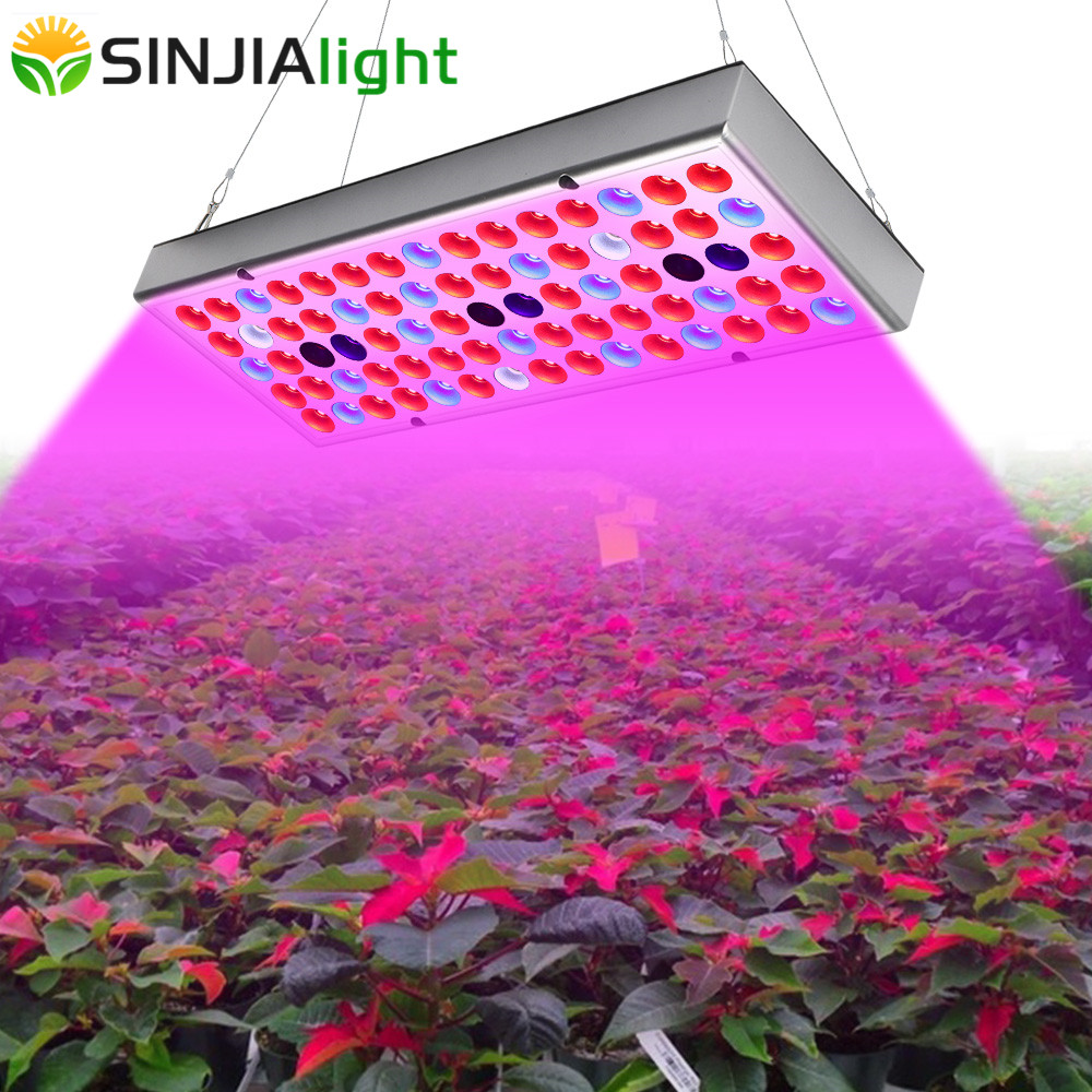 45W 25W LED Grow Light Full Spectrum 144/75LED Indoor Plant Lamp Phytolamp for Flowers Hydroponics Seedling Flowering Grow Box45W 25W LED Grow Light Full Spectrum 144/75LED Indoor Plant Lamp Phytolamp for Flowers Hydroponics Seedling Flowering Grow Box