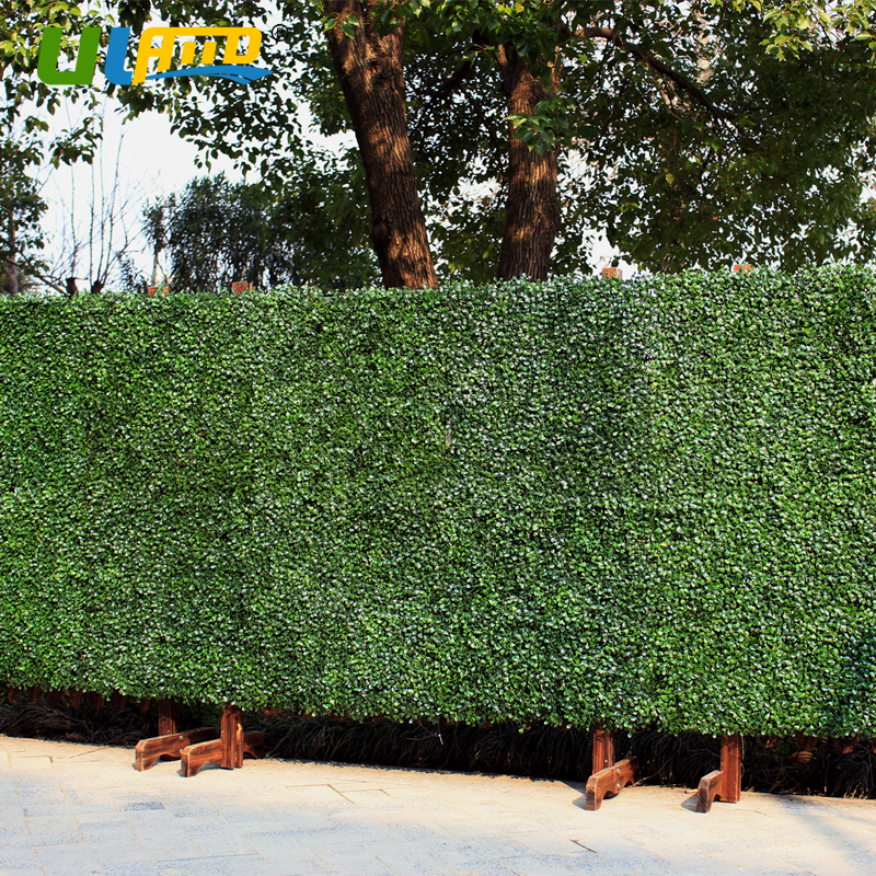 Uland Artificial Boxwood Panel Privacy Fence 48 Panels