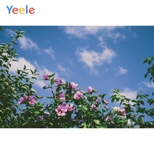 Yeele Landscape Photocall Flower Room Decor Paint Photography Backdrops Personalized Photographic Backgrounds For Photo Studio