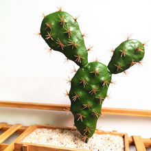 Simulation Succulent Artificial Flower Tropical Plant Cactus Creative Home Party Decor Ornaments
