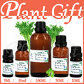 Free shopping 100% Pure plant essential oils parsley oil antibacterial, antispasmodic, dispels flatulence