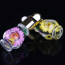Nail Cuticle Oil Professional Nutrition  Dried Flowers Manicure Tools Transparent Flower Flavor