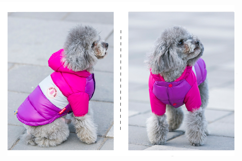 Winter Pet Dog Clothes Waterproof Warm designer Jacket Coat S -XXL Sport Style Puppy Hoodies Hat for Small Medium PETASIA 309