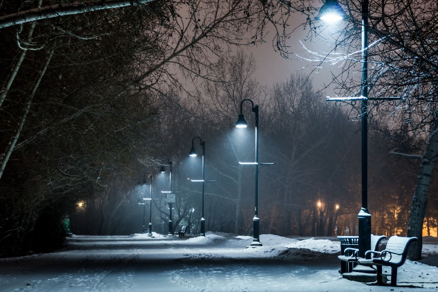 2017 Art Wall Prints Park Winter Snow Bench Lights Lamp
