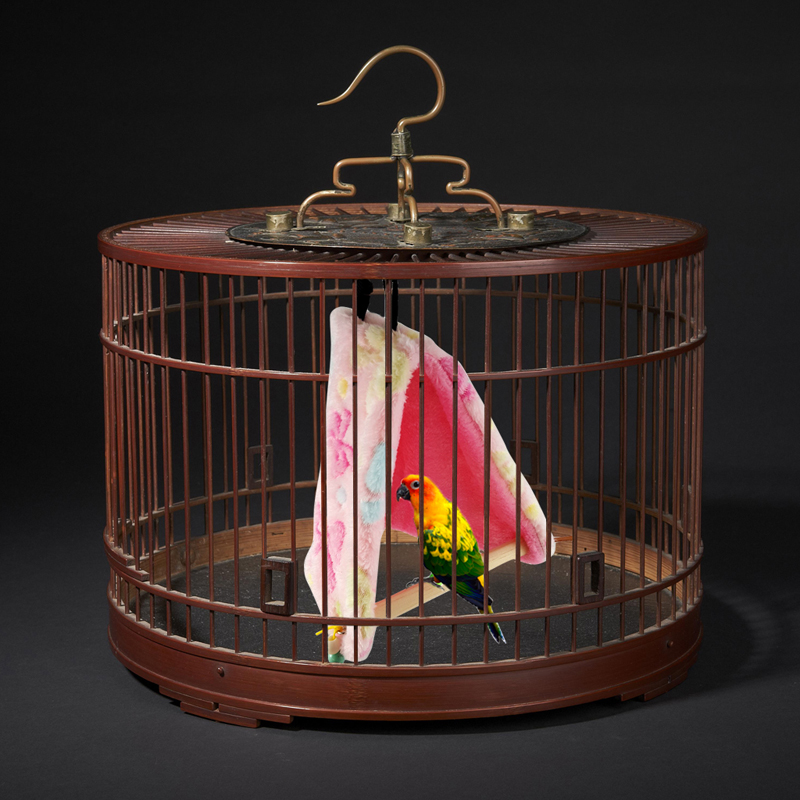 Pet Birds Parrot Plush Hammock Cage Happy Hut Tent Bed Hanging Cave Swing Toys