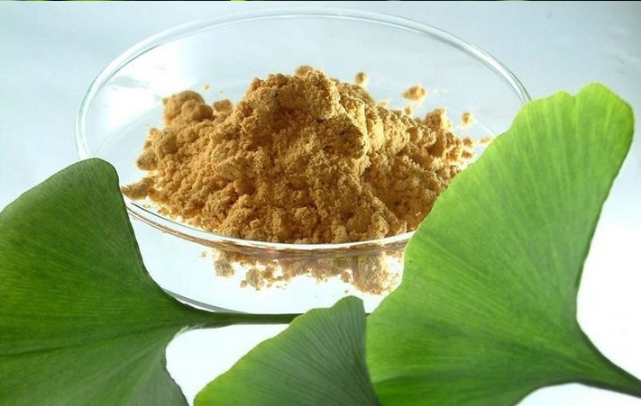 Best Quality Pure Nature Ginkgo Biloba Extract Powder 1kg Free Shipping