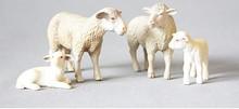 4PCS/SET Animal model toy Odor-free environment Argali sheep farm animals, wild sheep Curly sheep children's model figure toy