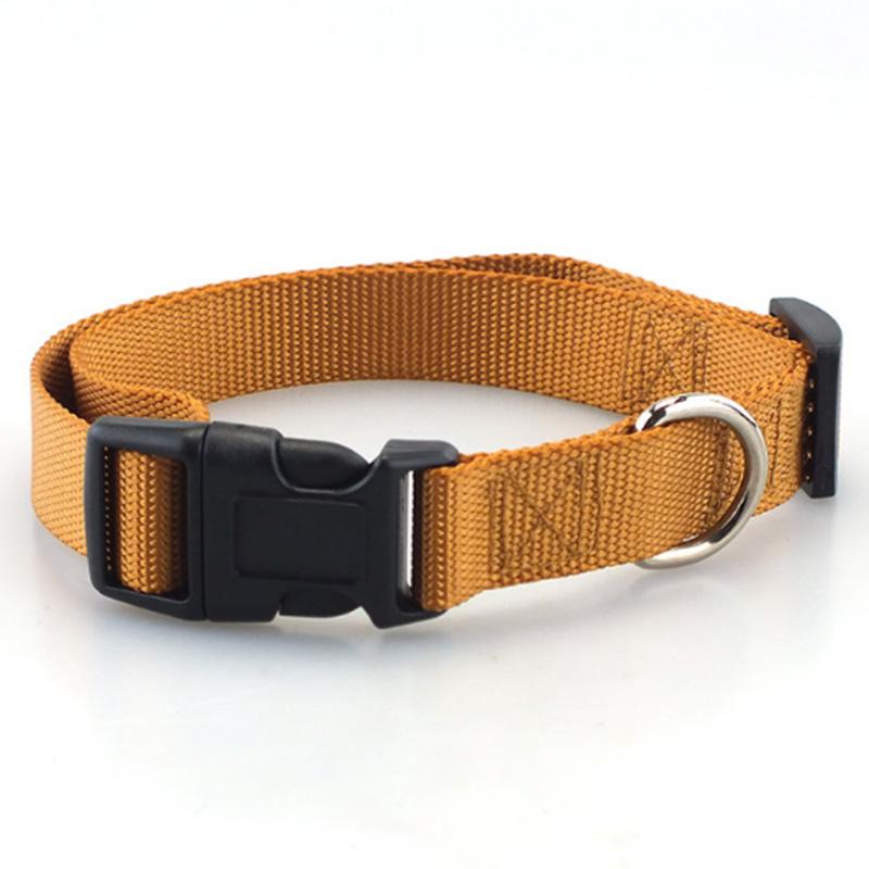 Collar de perro clásico 7