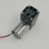 Micro diaphragm brushless 6v 12v 24v air operated diaphragm pump