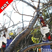 Electrical secateurs pruning shears HDP36-1 (8-12 working hours electric bypass pruner)