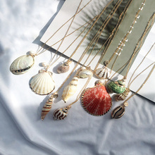 Fashion Seashell Cowrie Shell Necklace Chain Choker Conch Women Pendants Boho Gold Charm Jewelry Wedding Female