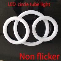 원형 튜브 LED 원형 링 램프 8 인치 원형 T9 LED 빛 형광 FC8T9 전구 직접 재배
