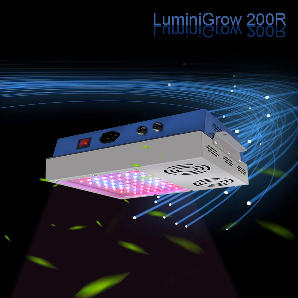 LuminiGrow 650W Double Chip 10W Plant Light Led Full Spectrum For Indoor Grow Plant and Flower 2pcs 30mil 10w 660nm plant grow lights led chip dc6 7v 1000ma excellent quality light source for plant grow faster and batter