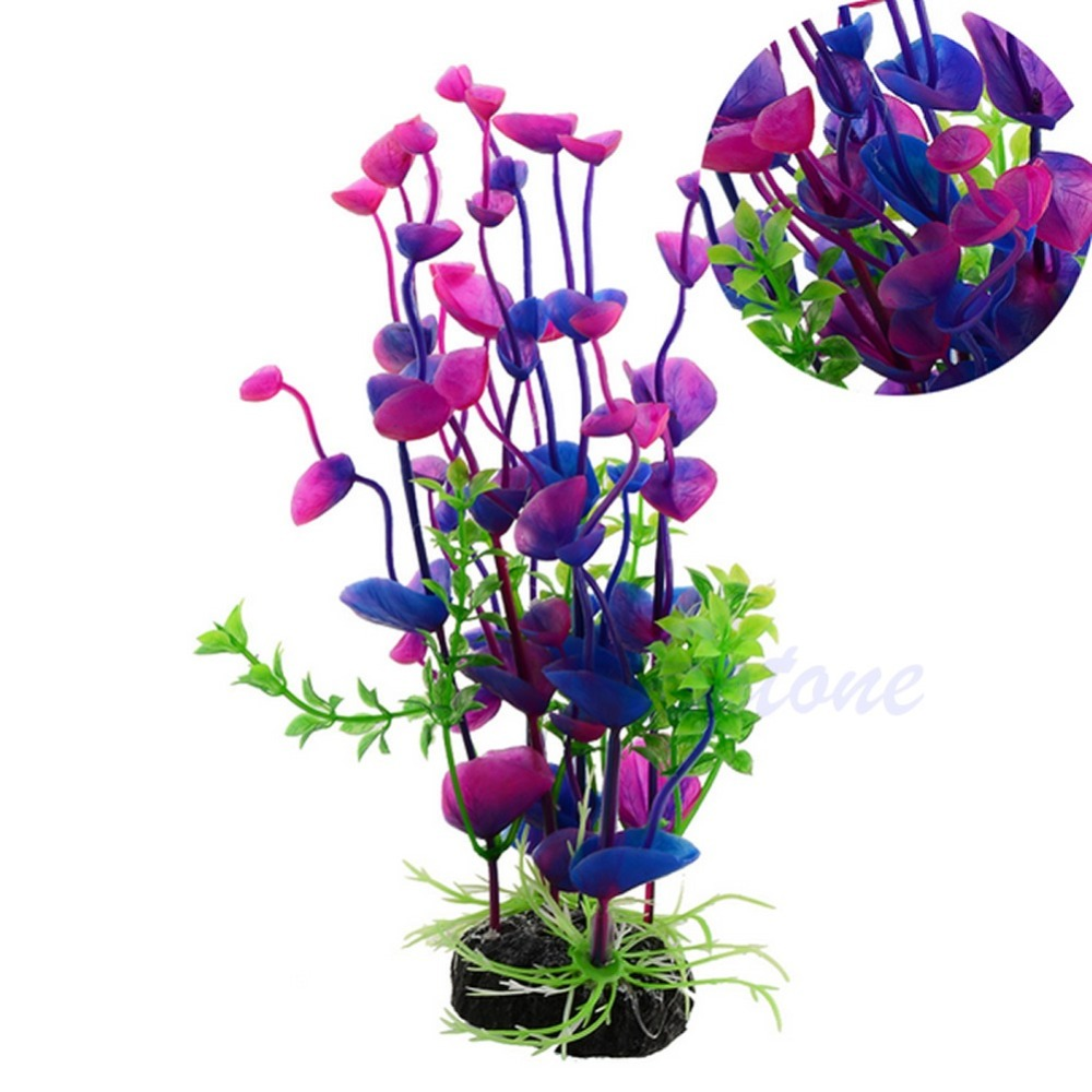 Online Buy Wholesale Purple Kitchen Decor From China: Online Buy Wholesale Plant Aquarium Plants From China