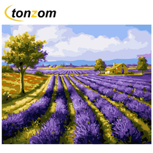 RIHE Flower Field Diy Painting By Numbers Lavender Oil On Canvas Hand Painted Cuadros Decoracion Acrylic Paint Art