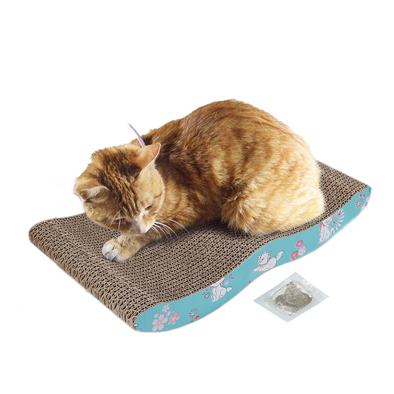 how to train a cat to use a scratching board