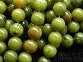 Frete Grátis (3 fios/set) Natural 10mm Verde jade Rodada Contas Loose DIY Semi-preciosa pedra Atacado