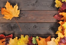 Laeacco Autumn Old Wooden Board Texture Yellow Leaves Photography Background Customized Photographic Backdrop For Photo Studio