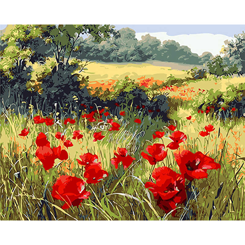 Red poppy DIY Framed Oil Painting By Numbers Red Flowers Window Pictures Canvas Painting For Living Room Wall Art Home Decor