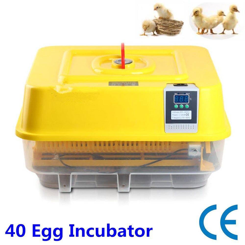 Full automatic chicken egg incubator brooder hatchery machine Promotion Sale