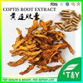 Coptidis rhizoma extract /coptis root P.E of berberine sulphate capsules 500mg*500pcs/lot free shipping