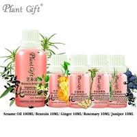 Free Shopping 100% Pure Cold pressed Sesame / Benzoin / Ginger / Rosemary / Juniper Oil 100ml DIY Handmade DIY Skin Care Natural