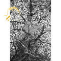 Микеланджело деревянные паззлы 1000 шт. гнездо рук-чертежа образовательные игрушки DIY декоративная роспись стен подарок домашнего декора