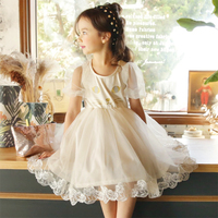 Retail 2017 Summer New Girls Dress Voile Character Ball Gown Lovely Puff Sleeve Kids Girls Dresses