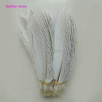 50Pcs/lot!12-14inches 30-35cm long Silver Pheasant Feathers,NATURAL Silver Pheasant Tail Feathers,loose feathers