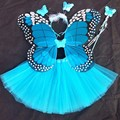 4 piece set Fantasy Fairy Angel butterfly wings+tutu skirt Christmas Halloween Party Cosplay Costumes For Girl Kid free shipping