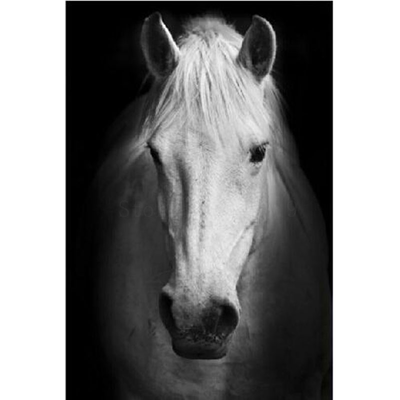 Online Buy Wholesale Horse Head Drawing From China Horse Head Drawing Wholesalers Aliexpress Com