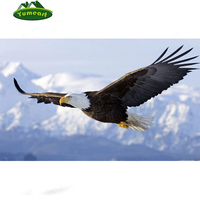 2015 Rushed DIY 3D Diamond Painting Eagle In Sky Soar Tenacity Mosaic Embroidery Home Decoration Fabric
