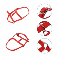MUMIAN Headstall Horse Riding Racing Halter Horsing Accessories Red Blue S M L Collar