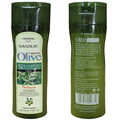 Olive Oil Essence Hair Growth Nourishing Anti dandruff Shampoo  Deeply Nourishes Safe for All Hair Types and Color Treated Hair