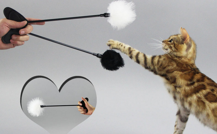 Free shipping new style cat toy turkey feather with heart for Cat toy fishing pole