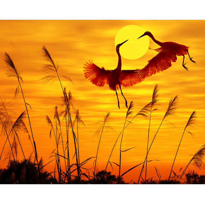 Sunset Crane Lovers Animal DIY Digital Painting By Numbers Modern Wall Art Canvas Painting Unique Gift Home Decor 40x50cm