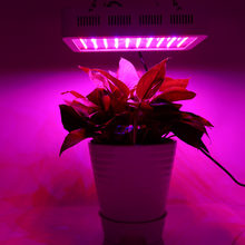 1000W Full Spectrum LED Plant Grow Light Veg Lamp Indoor Greenhouse Garden Growth Light(China)