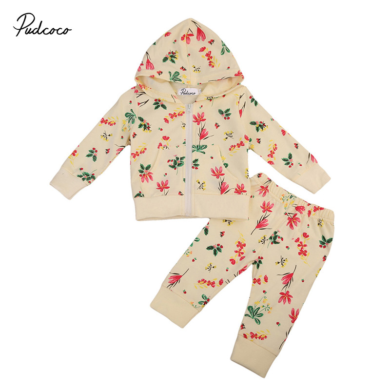 0 to 18M Kid Baby Girls Clothes Cotton Warm Hoodies Long Sleeve Sweatshirt Tops Long Pants 2pcs Outfits Baby Clothing Set