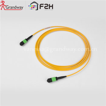 [Grandway Original] 8Fibers  MPO-MPO Female Type B OS2  SingleMode 9/125um LSZH Low loss trunk cable 1m